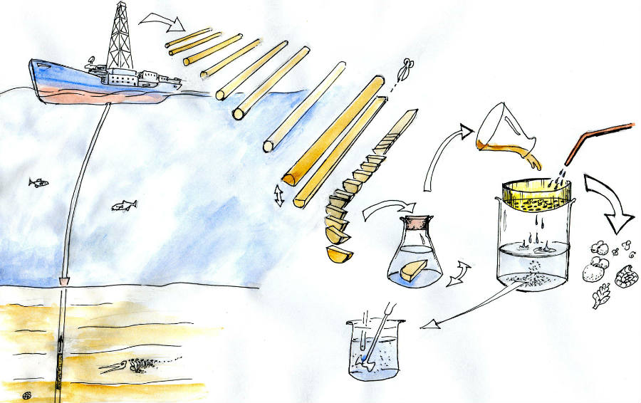 Cartoon showing the process of retrieving cores to producing samples